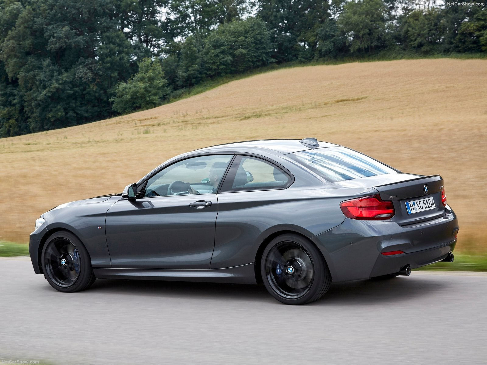 BMW 2-Series Coupe photo 180421