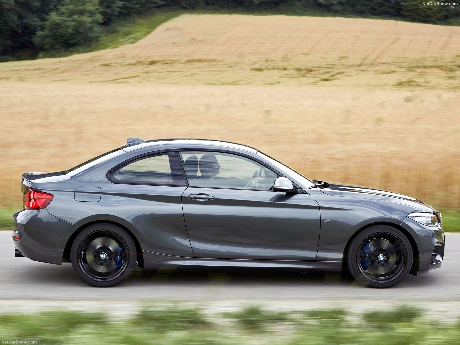 BMW 2-Series Coupe photo 180429