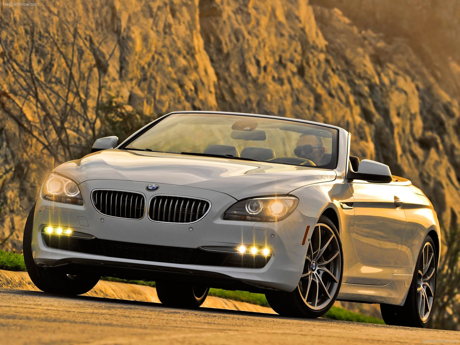 BMW 6-series F13 Convertible photo 81143