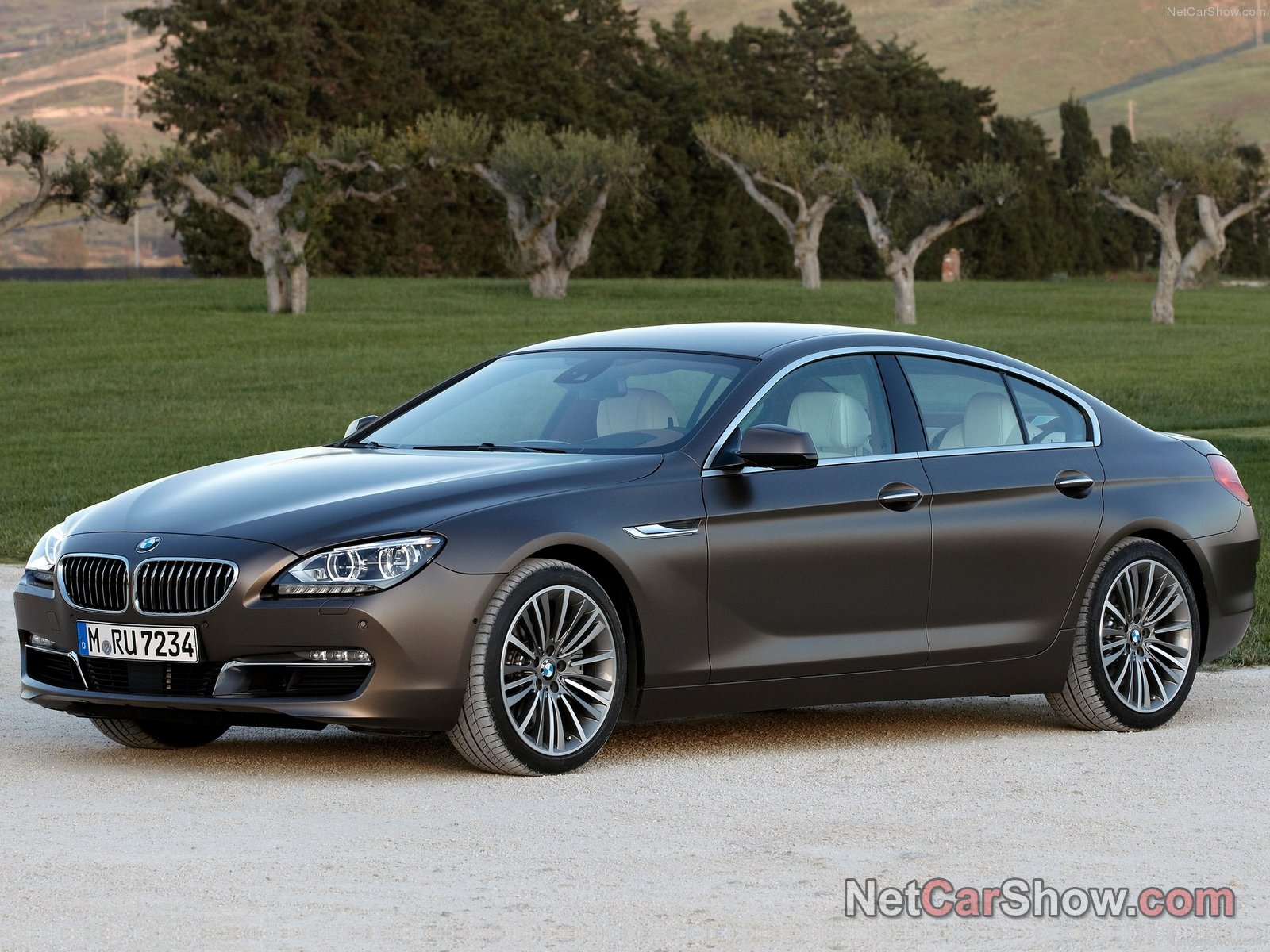 bmw 6 series gran coupe photos photo gallery page 7. Black Bedroom Furniture Sets. Home Design Ideas