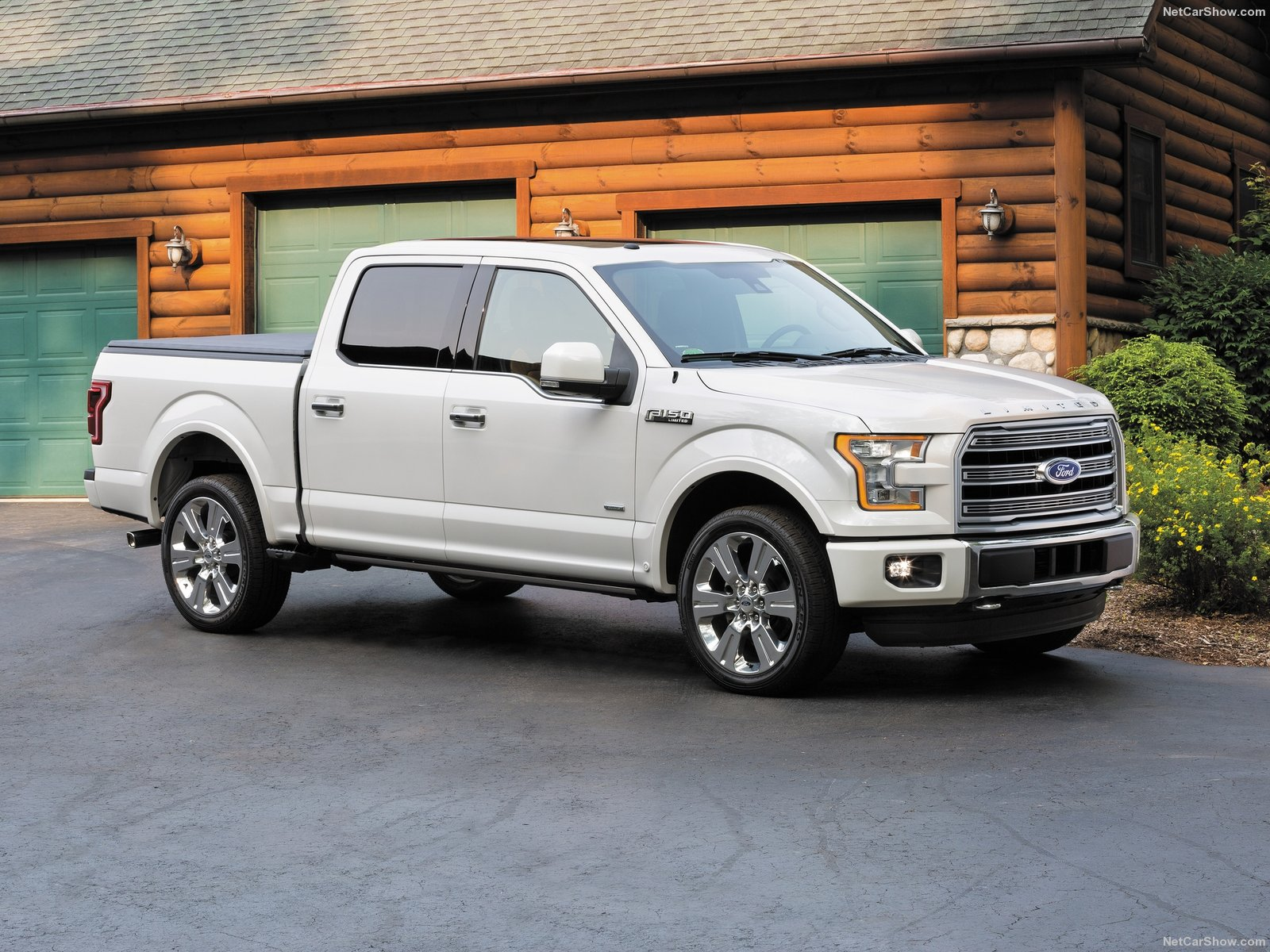 Ford F-150 Limited photo 146531