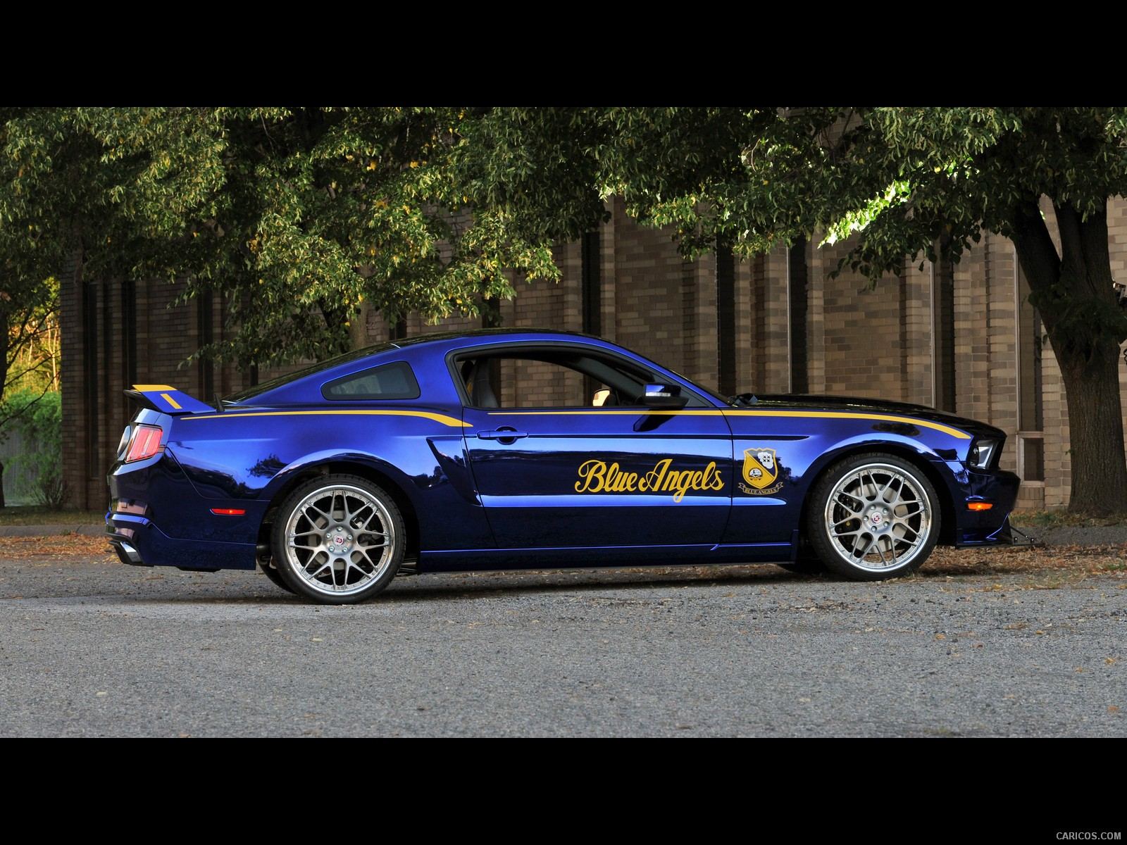Ford Mustang GT Blue Angels Edition photo 121563