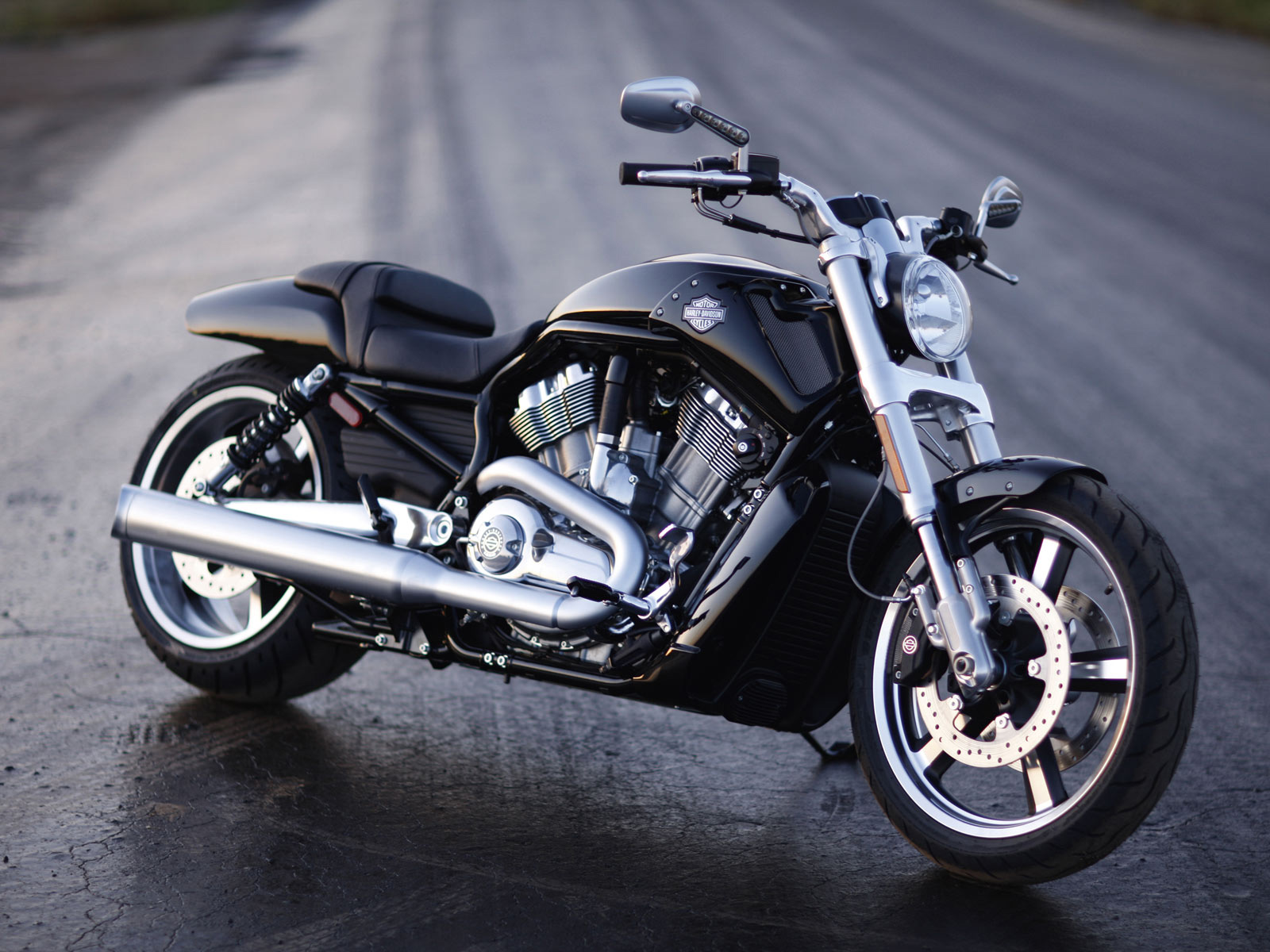 Harley-Davidson VRSCF V-Rod Muscle photo 70099