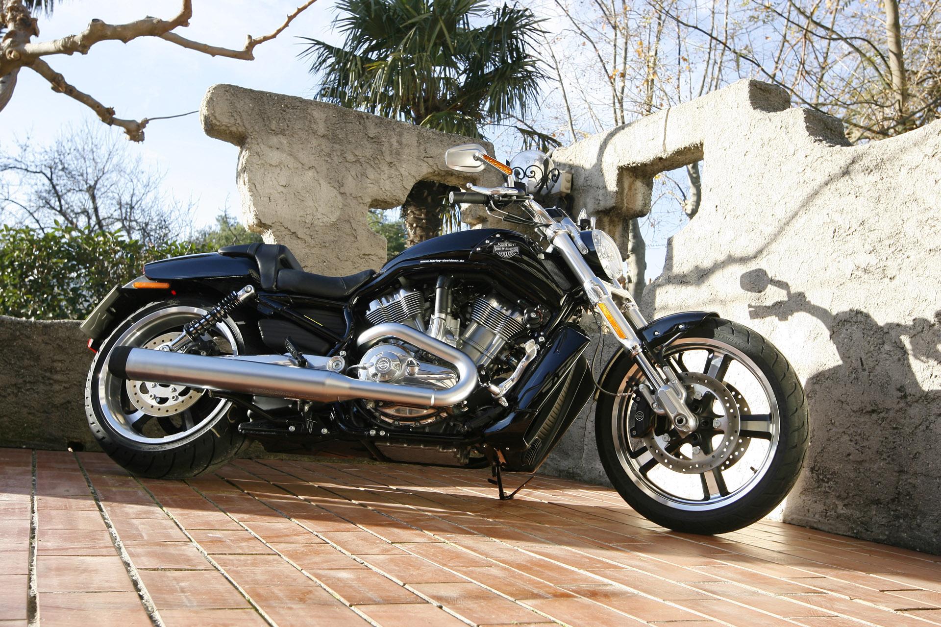 Harley Davidson: Harley-Davidson VRSCF V-Rod Muscle Photos