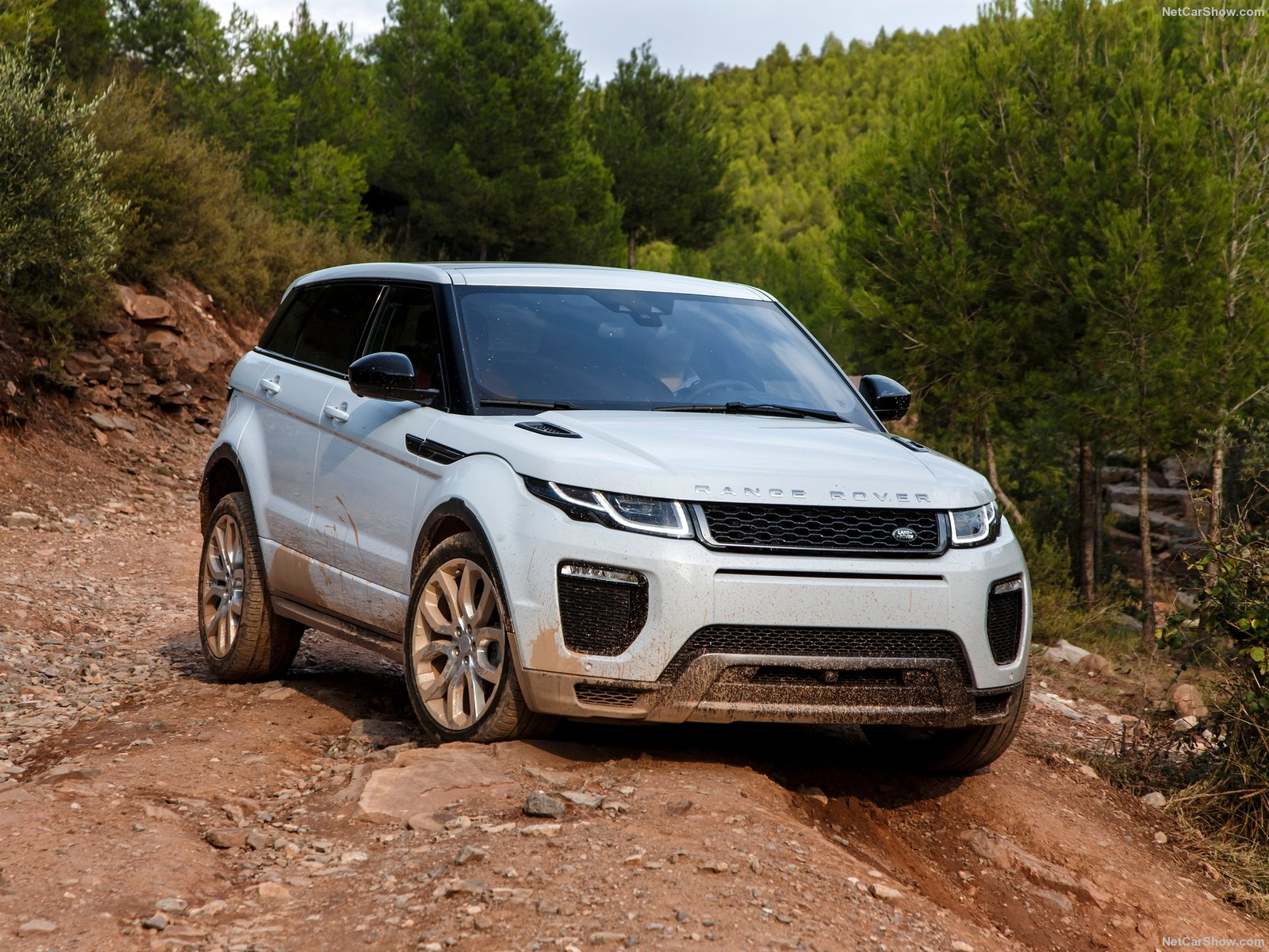 land rover range rover evoque photos photogallery with 176 pics cars pictures. Black Bedroom Furniture Sets. Home Design Ideas