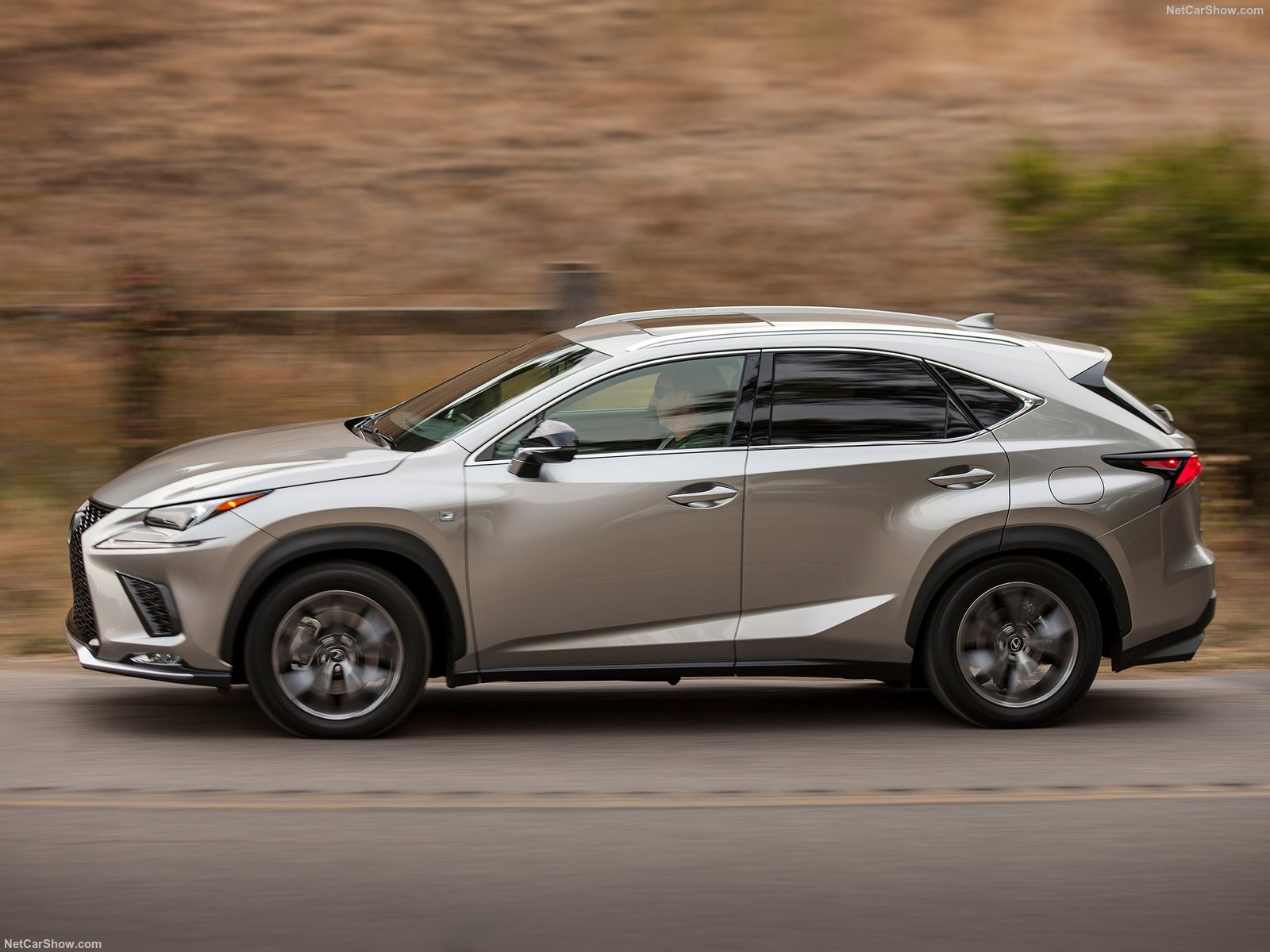 Lexus NX photo 183299