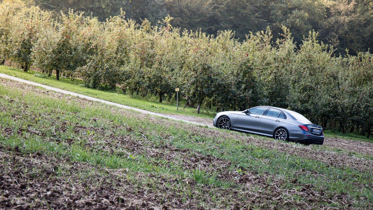 Mercedes-Benz AMG E43 photo 170074