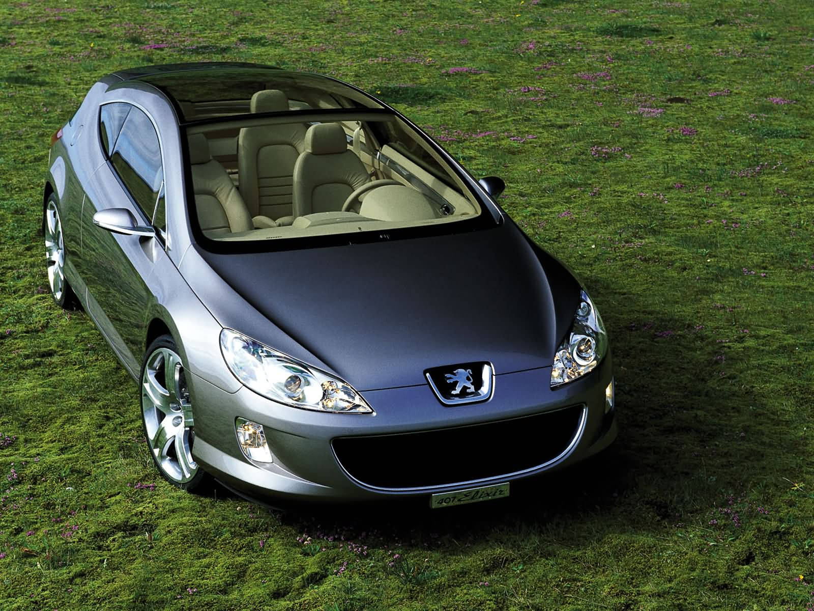 http://www.carsbase.com/photo/Peugeot-407_mp40_pic_1996.jpg