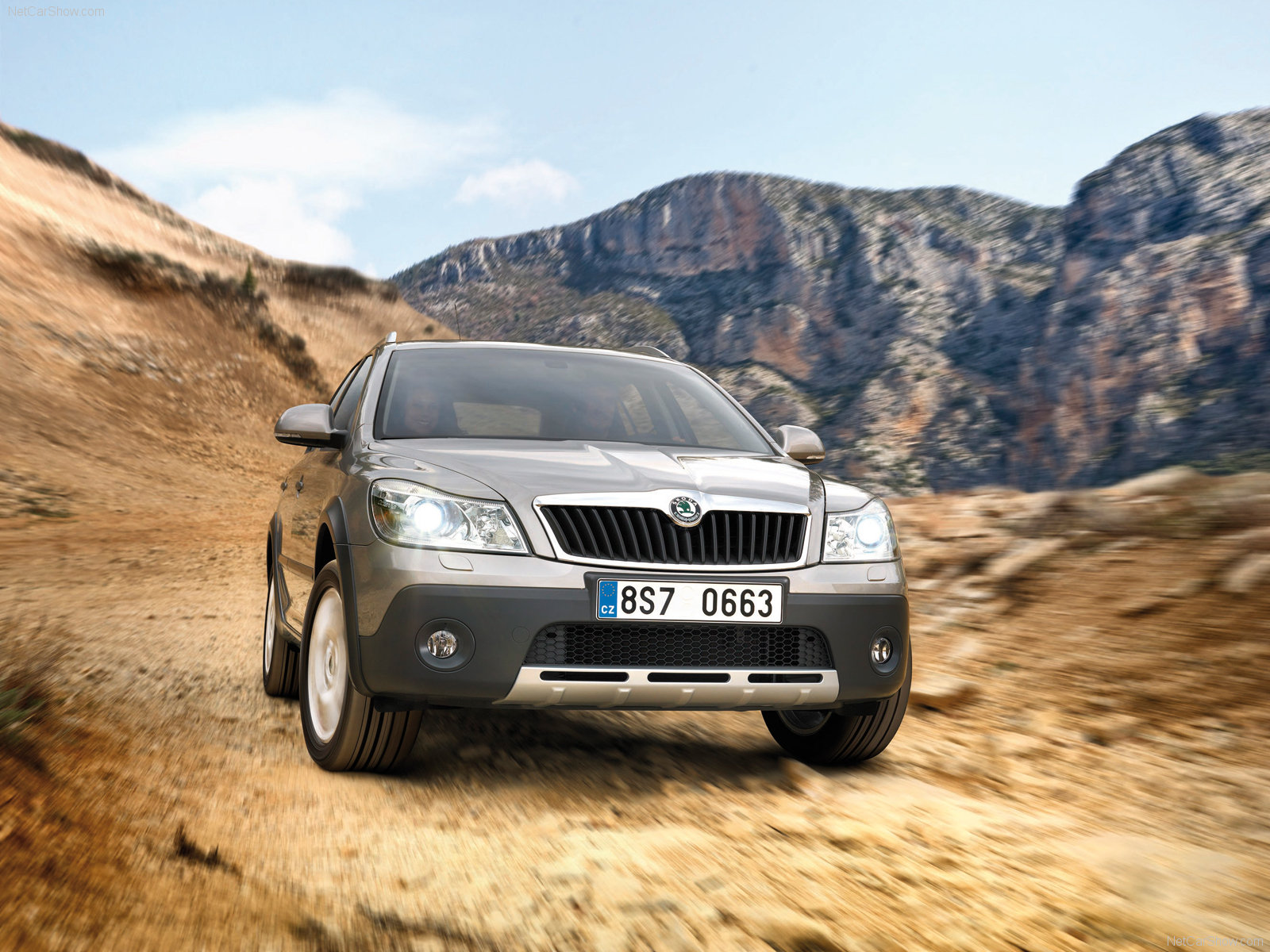 Skoda Octavia Scout photo 64306