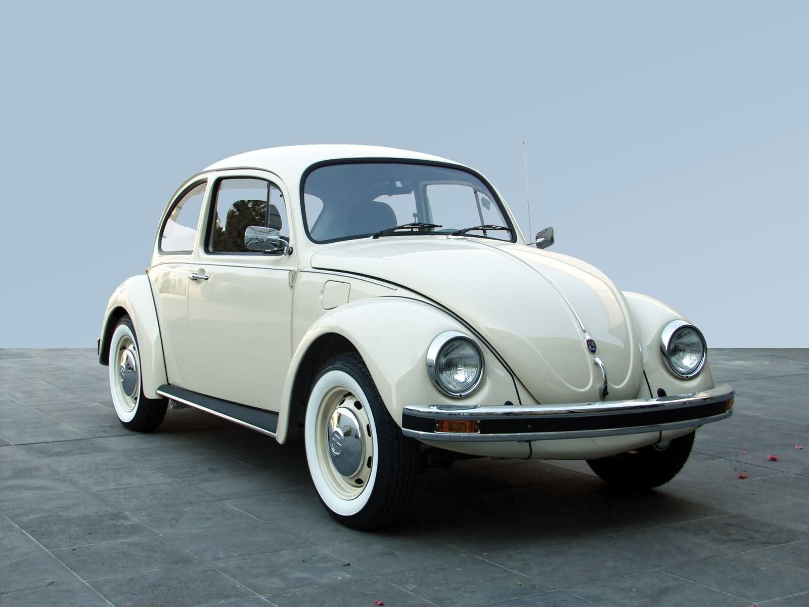 Volkswagen Beetle Picture # 17899