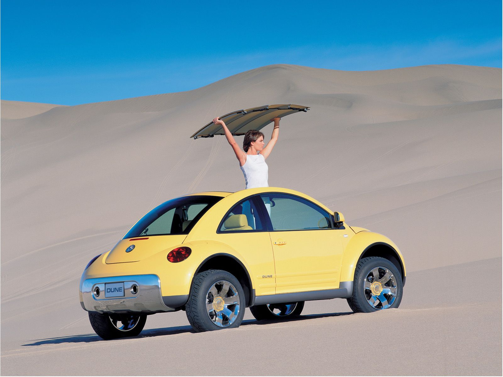 Volkswagen New Beetle Dune photo 9726