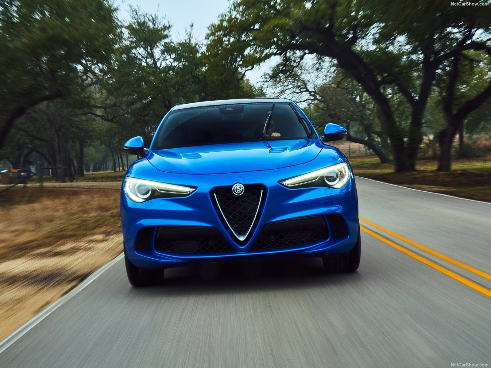 Alfa Romeo Stelvio photo 188076