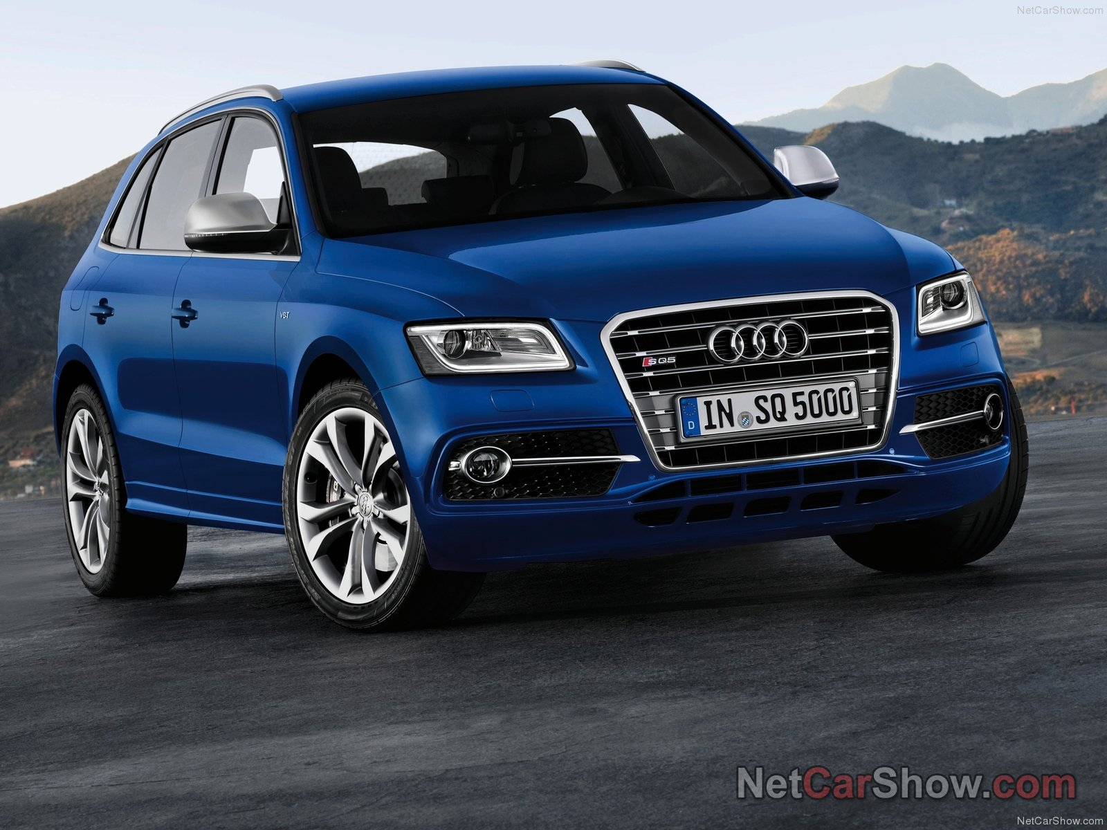 Audi SQ5 TDI photo 93460