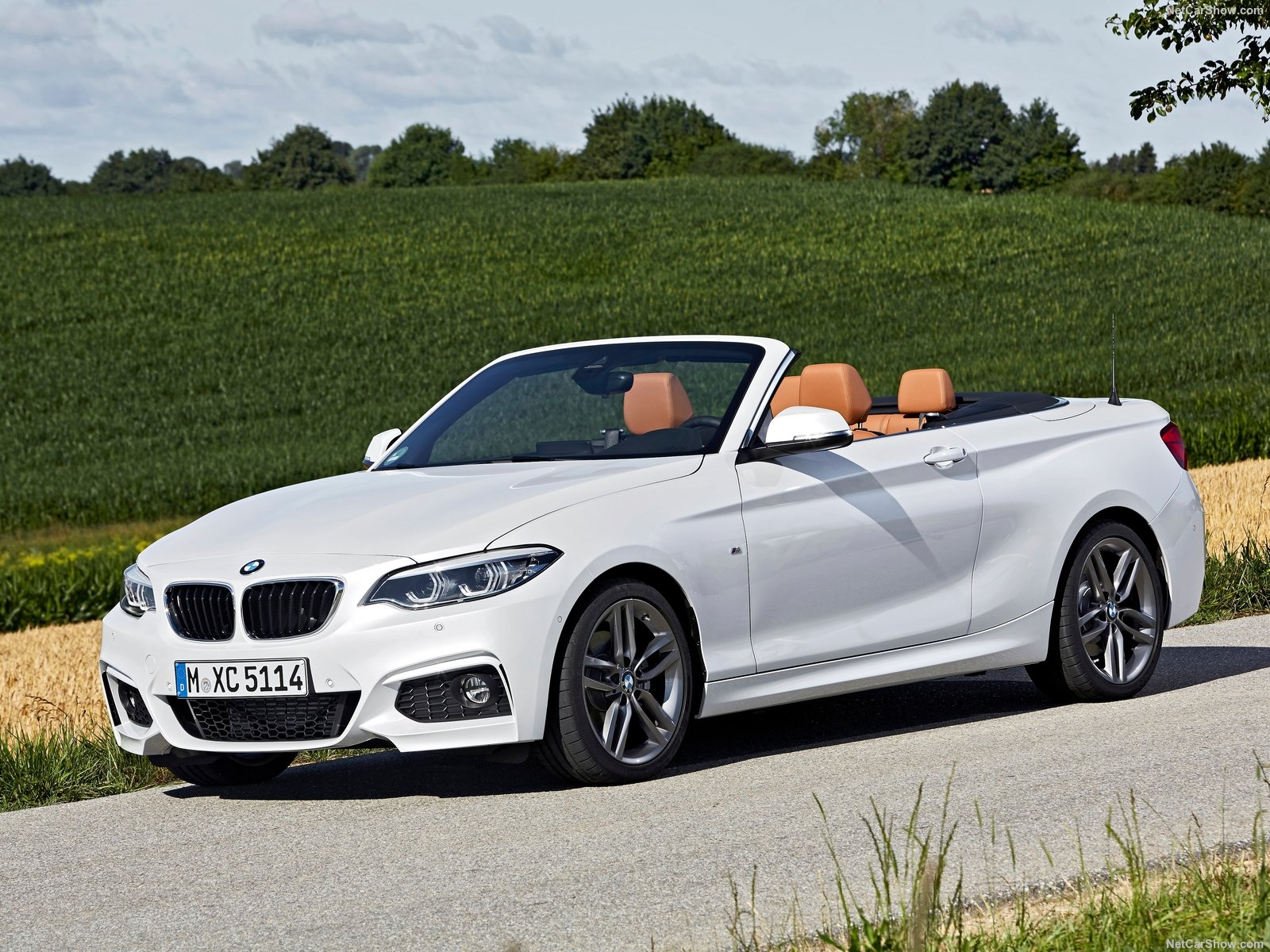 BMW 2-Series Convertible photo 180476