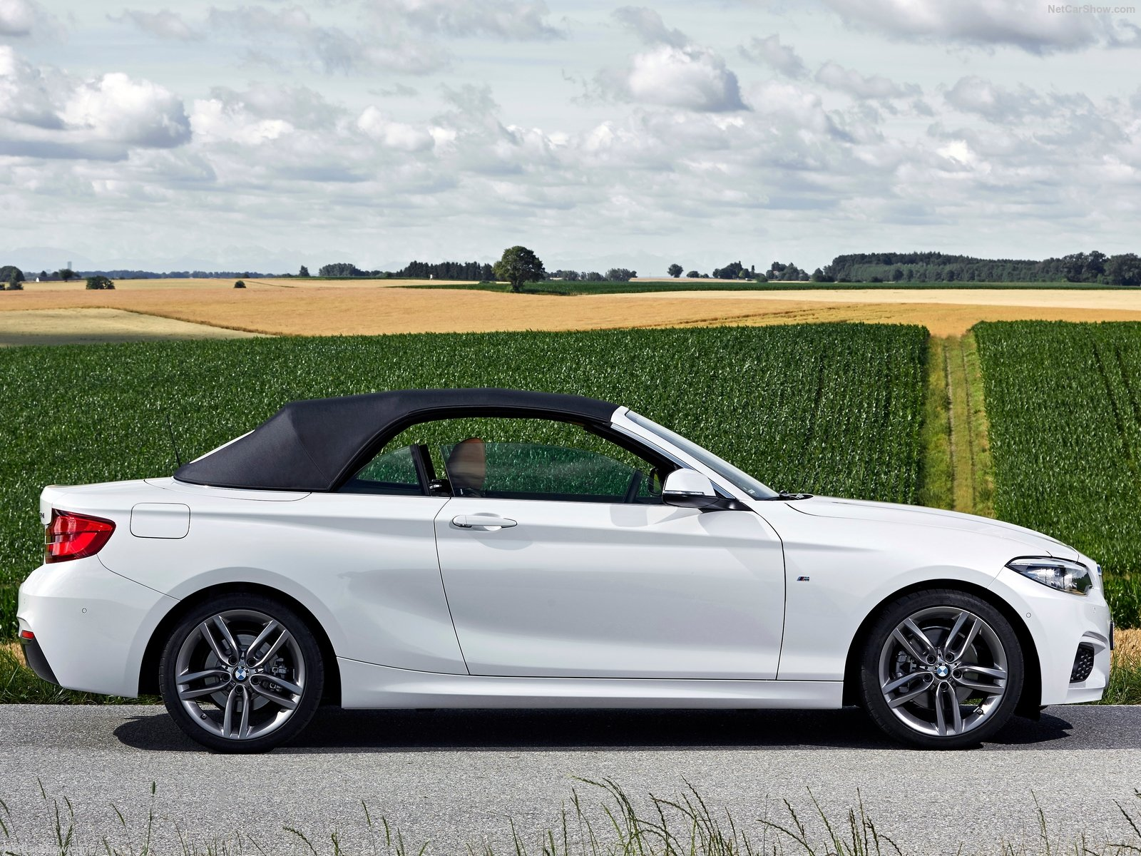 BMW 2-Series Convertible photo 180480