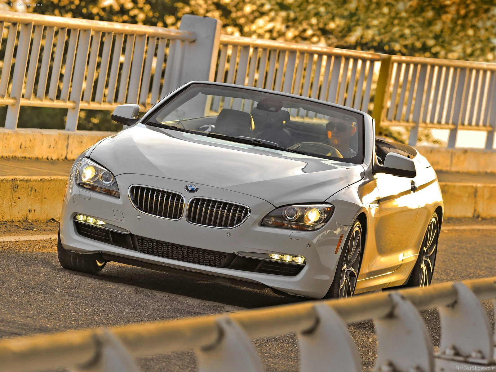 BMW 6-series F13 Convertible photo 81132