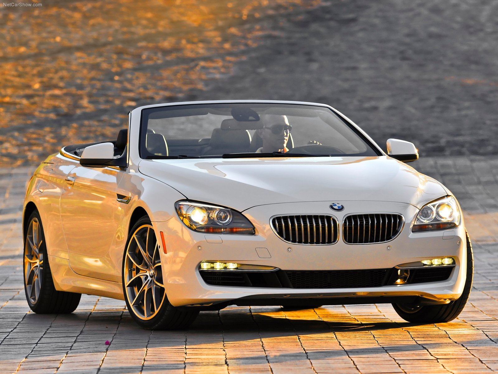 BMW 6 series F13 Convertible picture