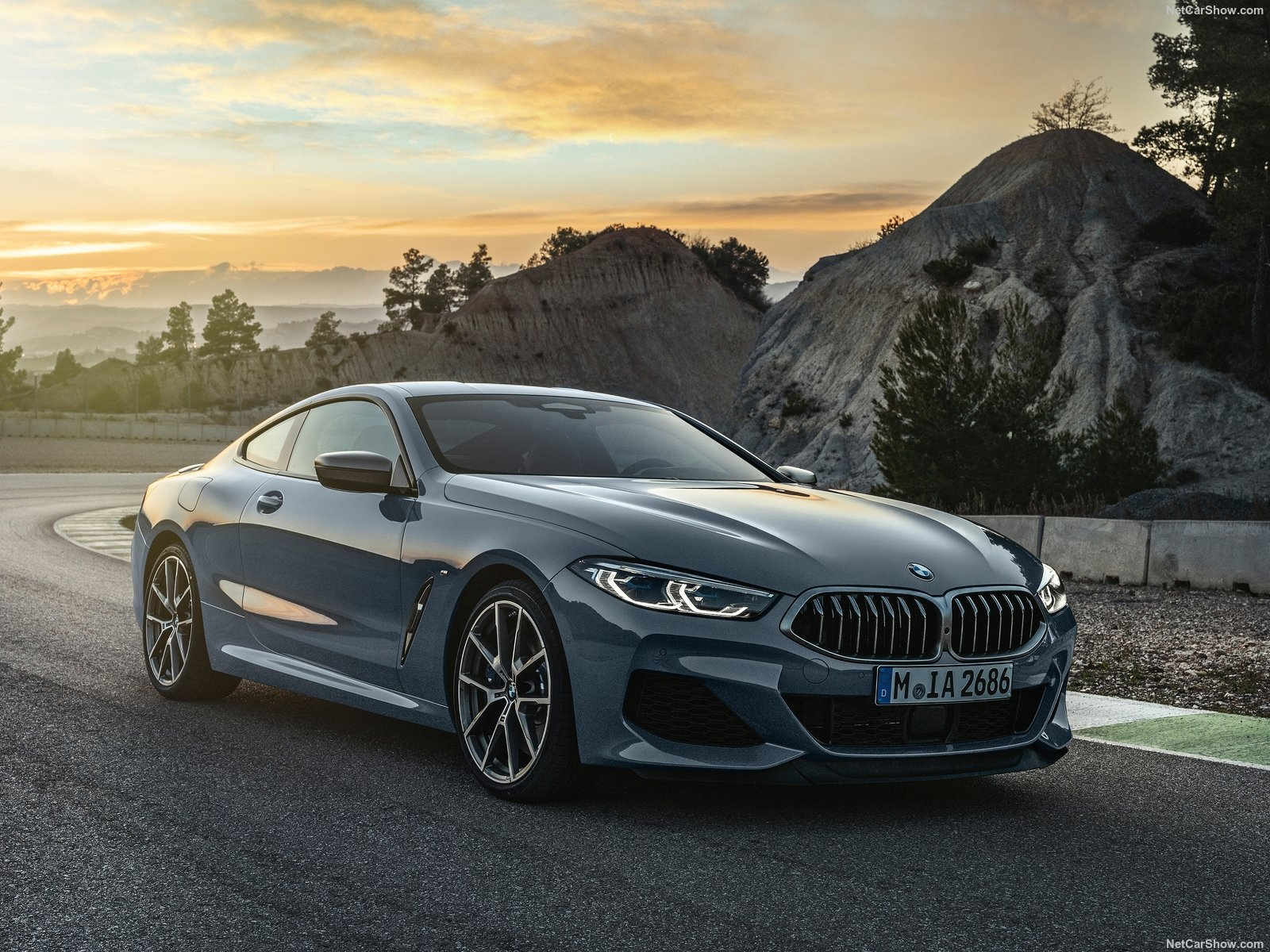 BMW 8-series G15 photo 189068