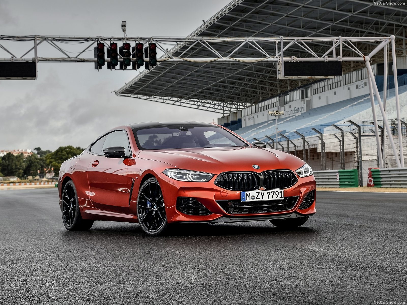 BMW 8-series G15 photo 191387