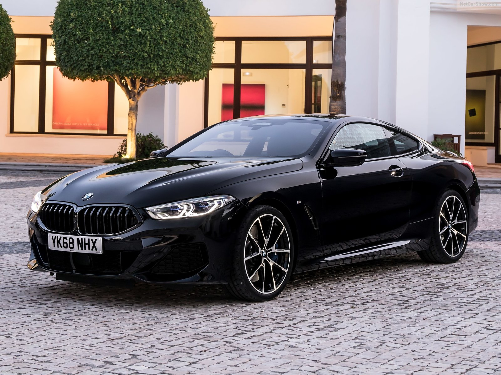 BMW 8-series photo 192646