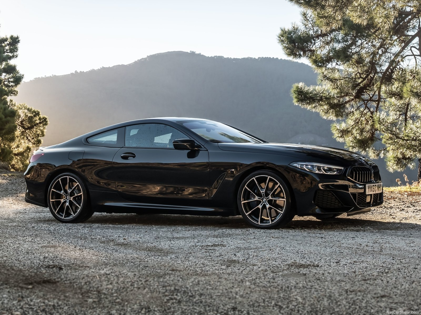BMW 8-series photo 192648