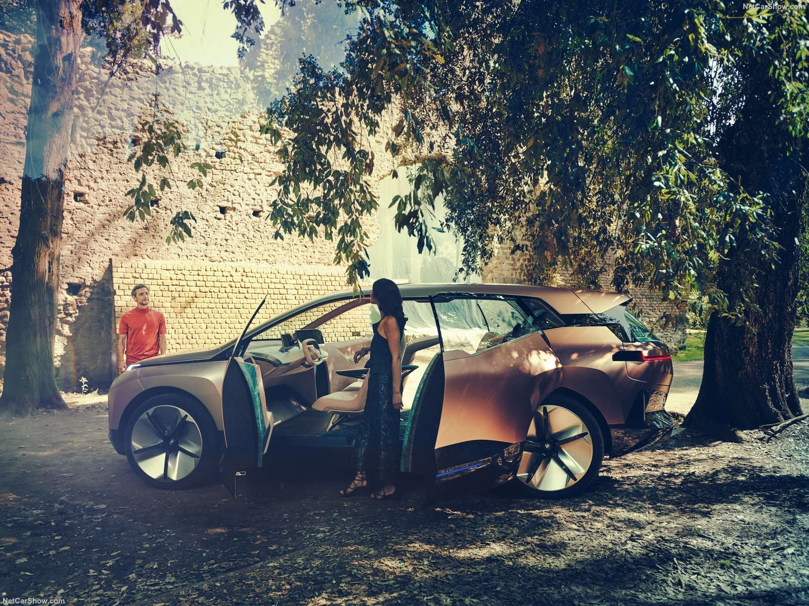 BMW Vision iNEXT photo 191160