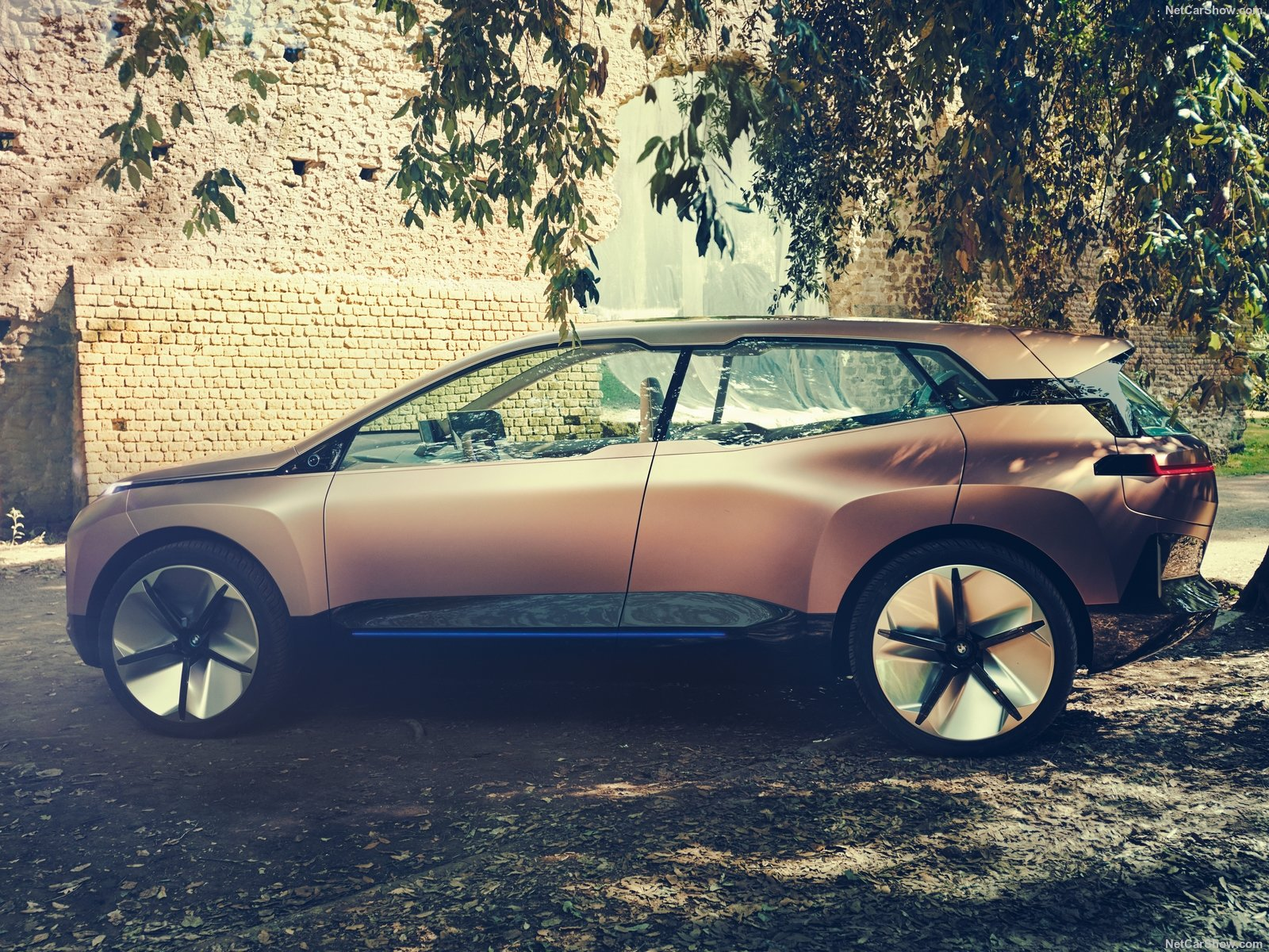 BMW Vision iNEXT photo 191163