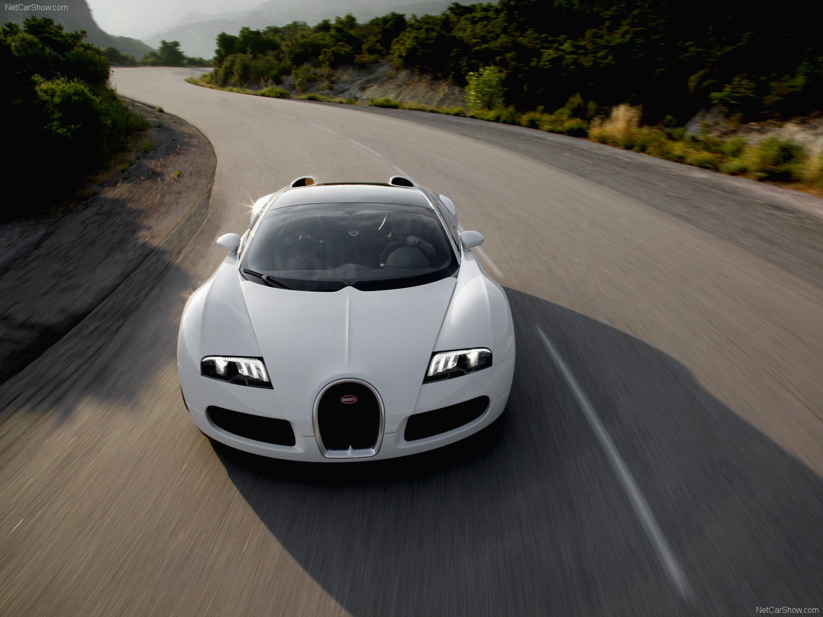 Bugatti Veyron Grand Sport photo 62129
