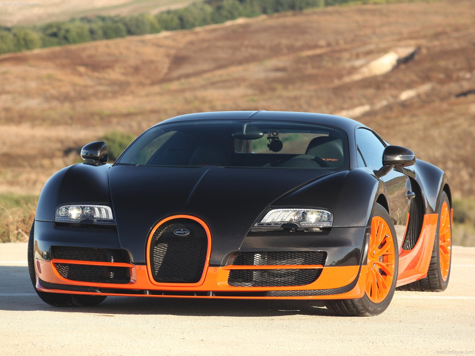 Bugatti Veyron Super Sport photo 77567