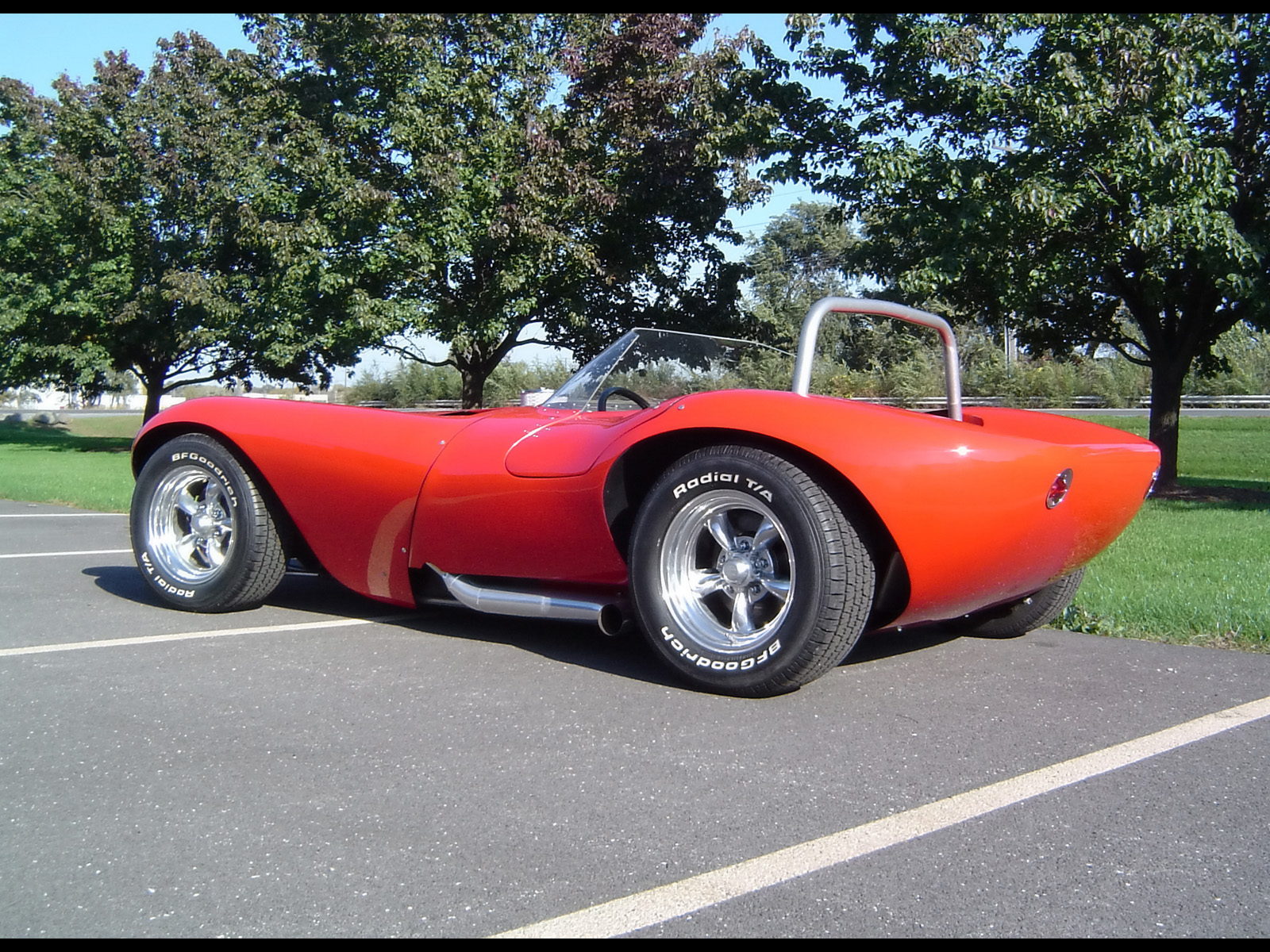 Cheetah Roadster photo 54613