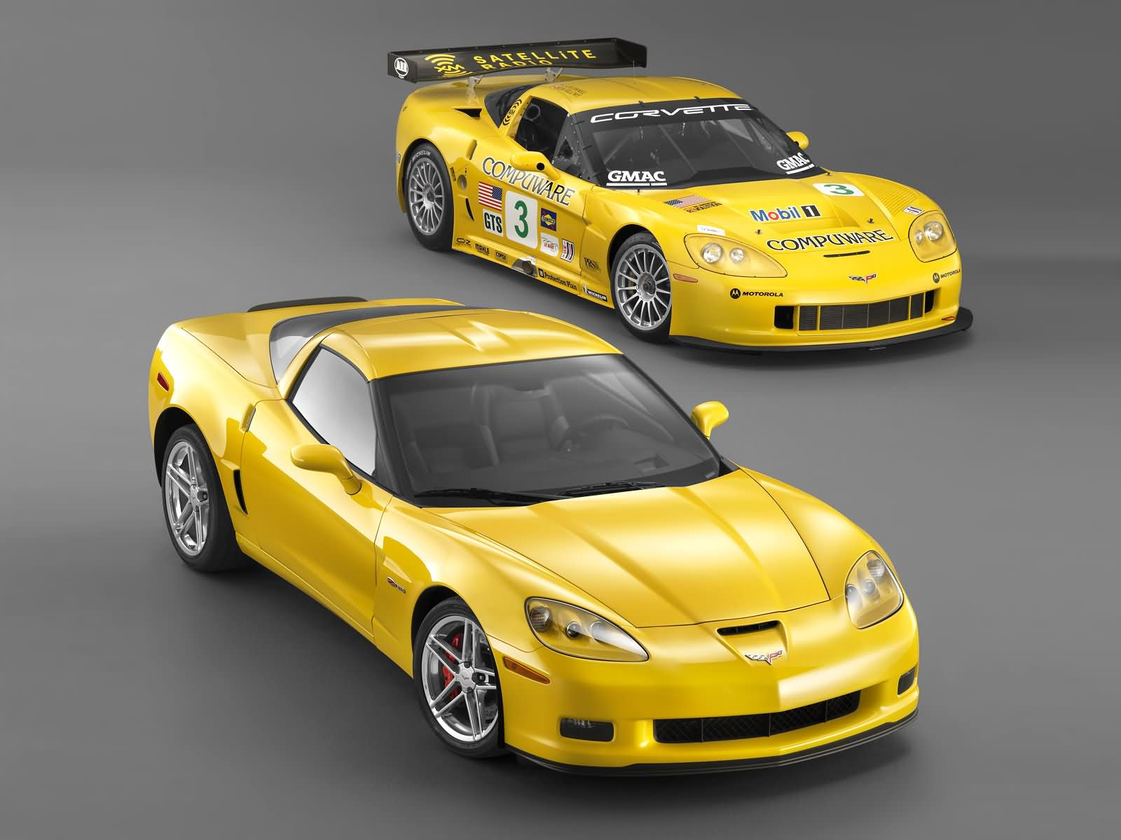 Chevrolet Corvette C6R photo 18515