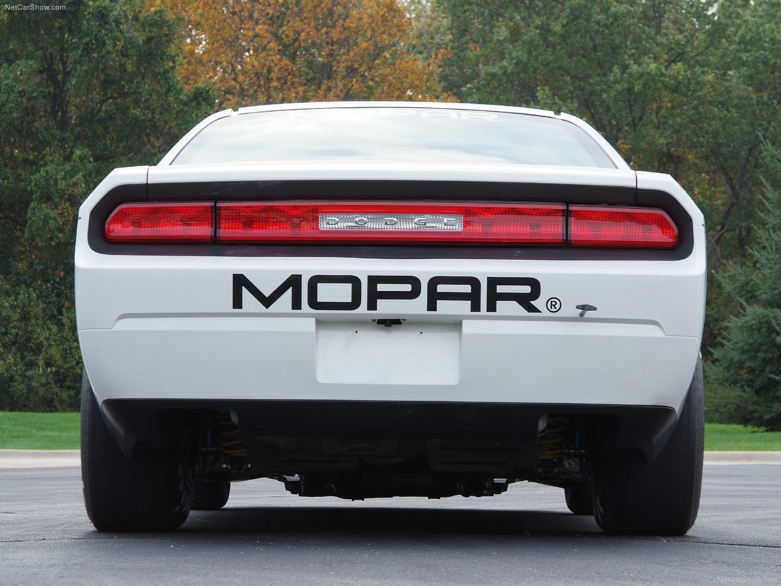 Dodge Challenger V10 Mopar Drag Pak photo 76092