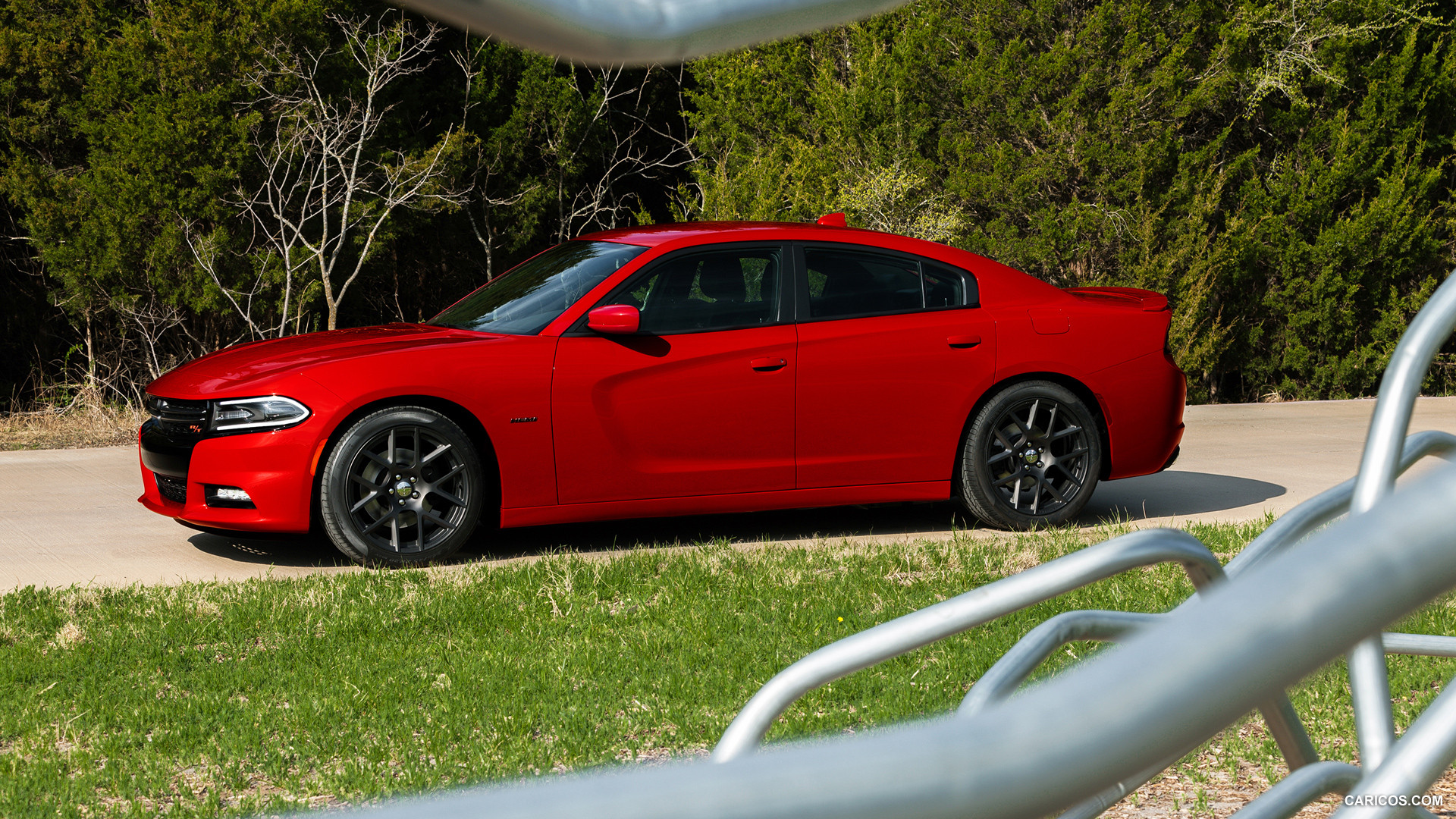 Dodge Charger photo 117163