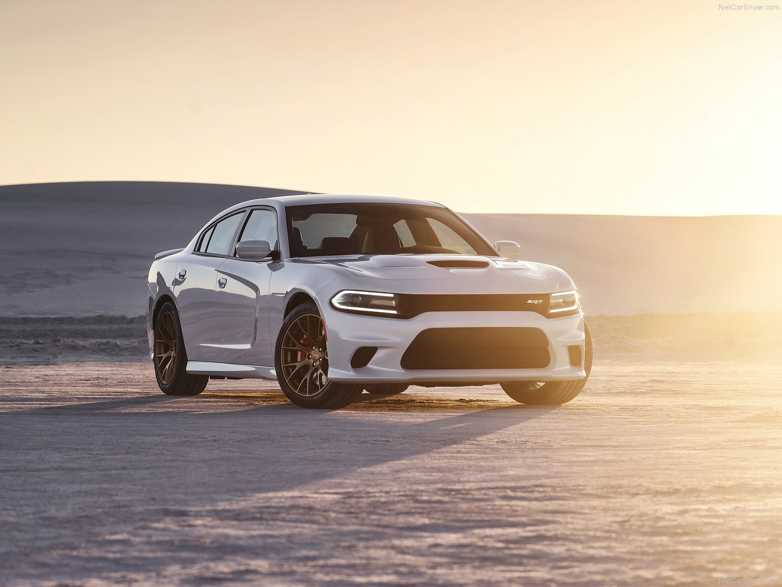 Dodge Charger Srt Hellcat Picture 127408 Dodge Photo Gallery