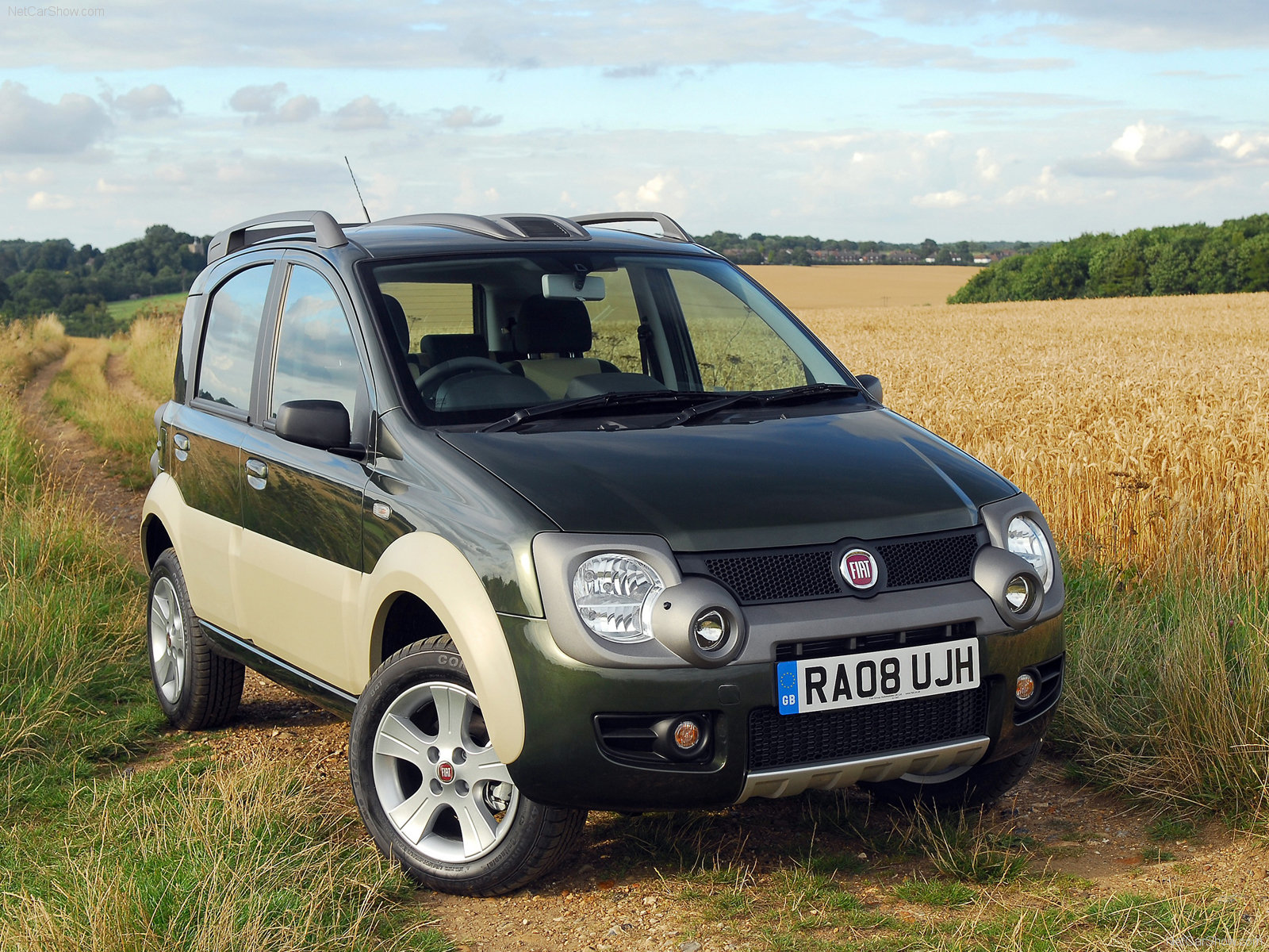 Fiat Panda Cross photo 57335