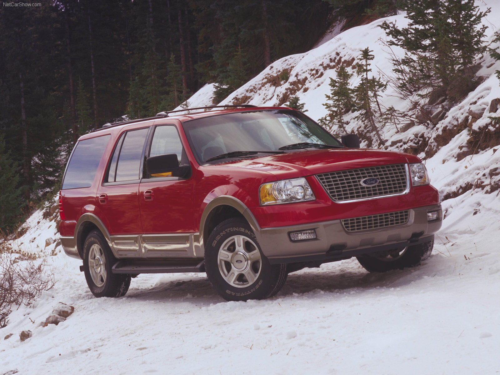 Ford Expedition photo 33242