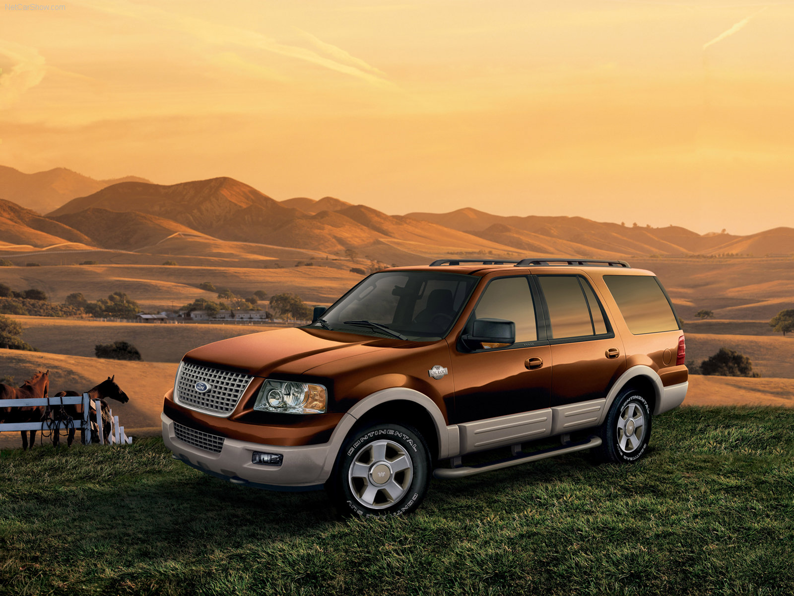 Ford Expedition photo 33260