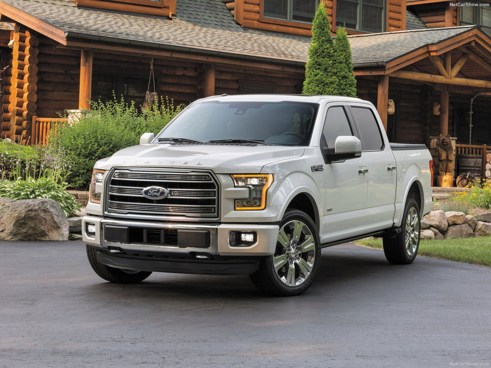 Ford F-150 Limited photo 146530