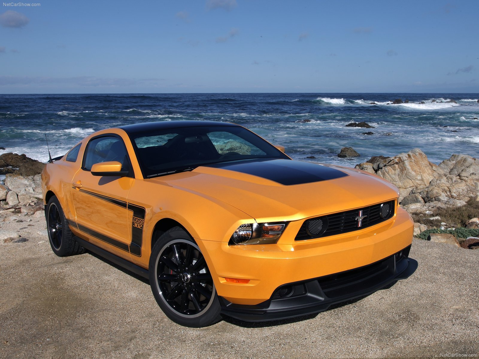 Ford Mustang Boss 302 photo 78993