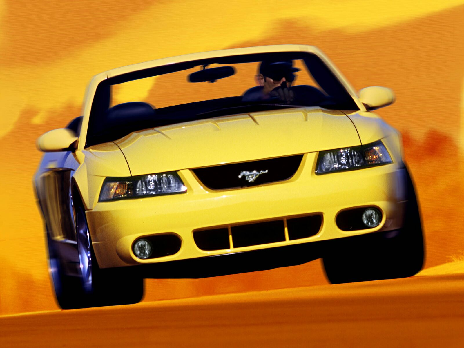 Ford Mustang Cobra photo 10608