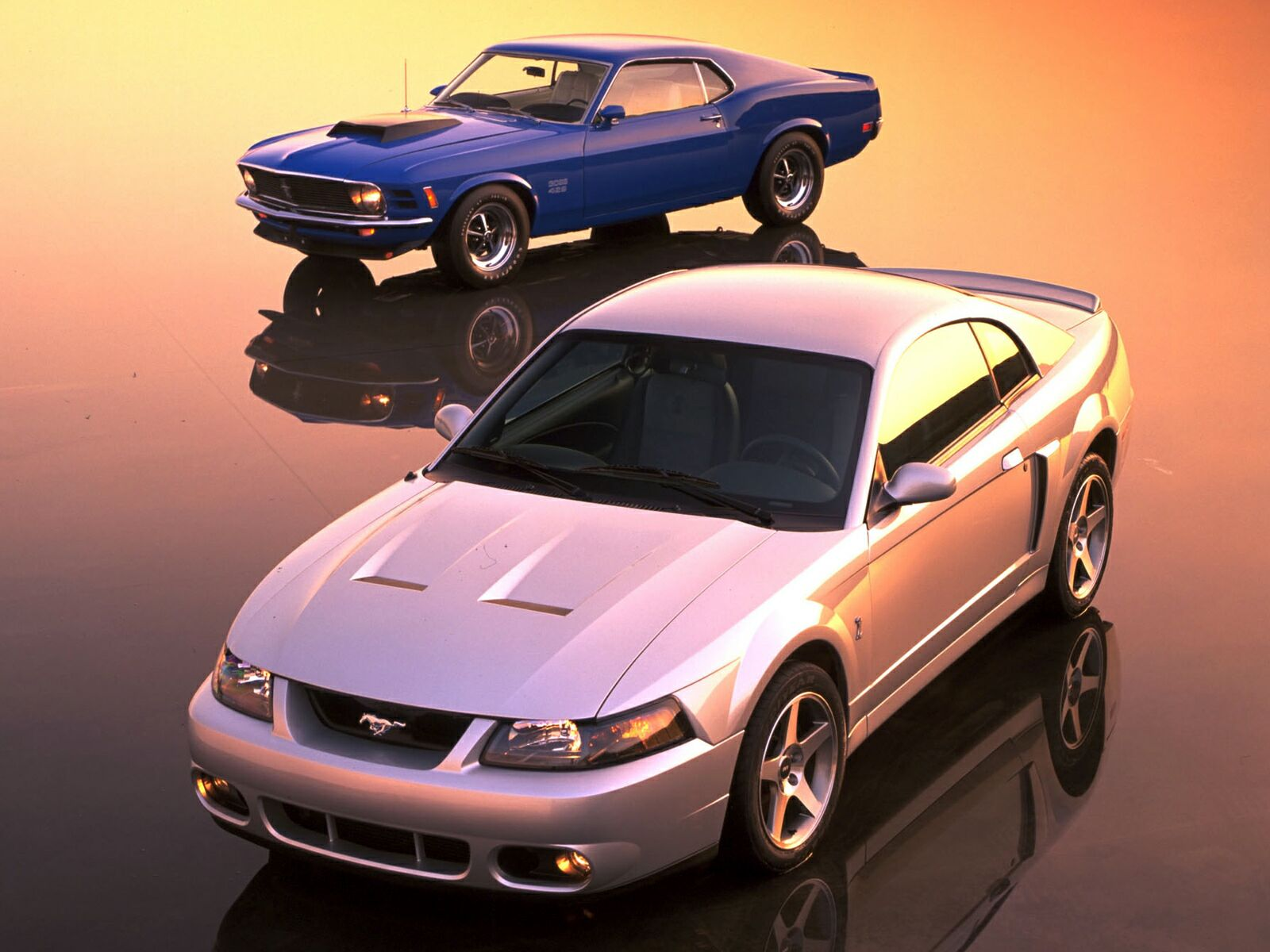 Ford Mustang Cobra photo 10612