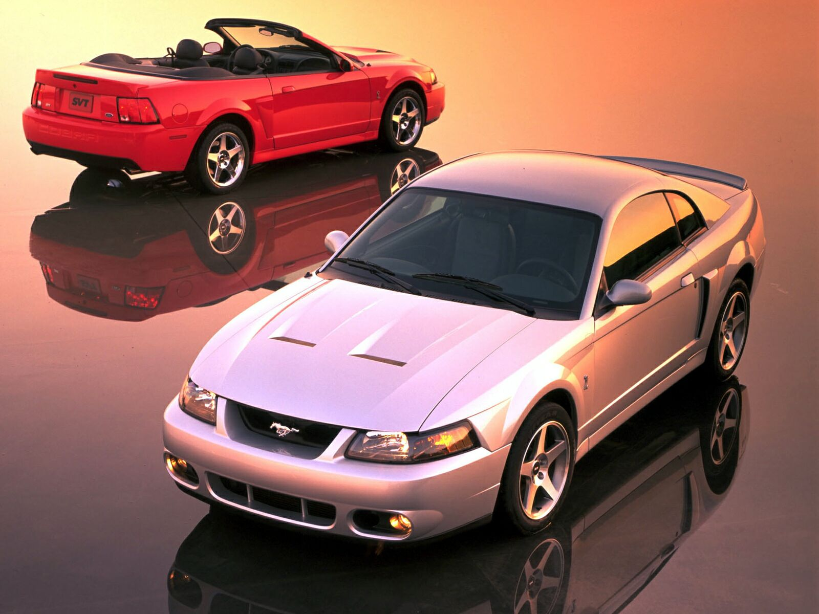 Ford Mustang Cobra photo 10613
