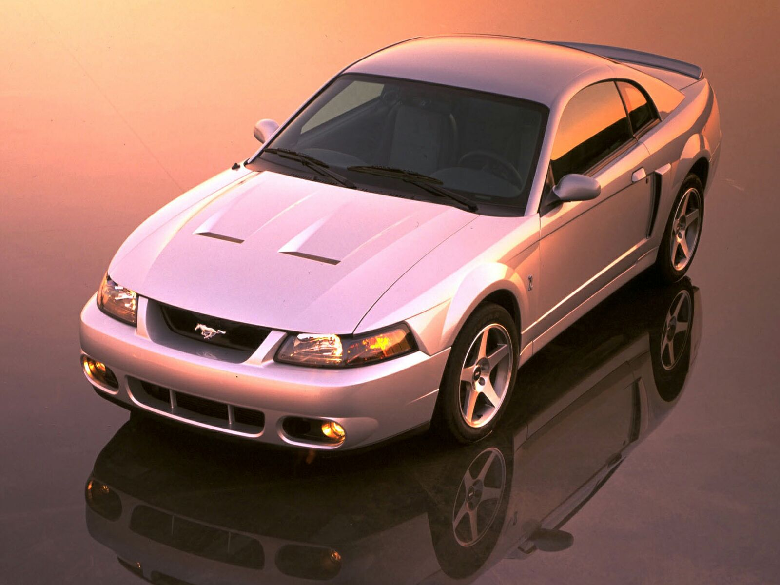 Ford Mustang Cobra photo 10615