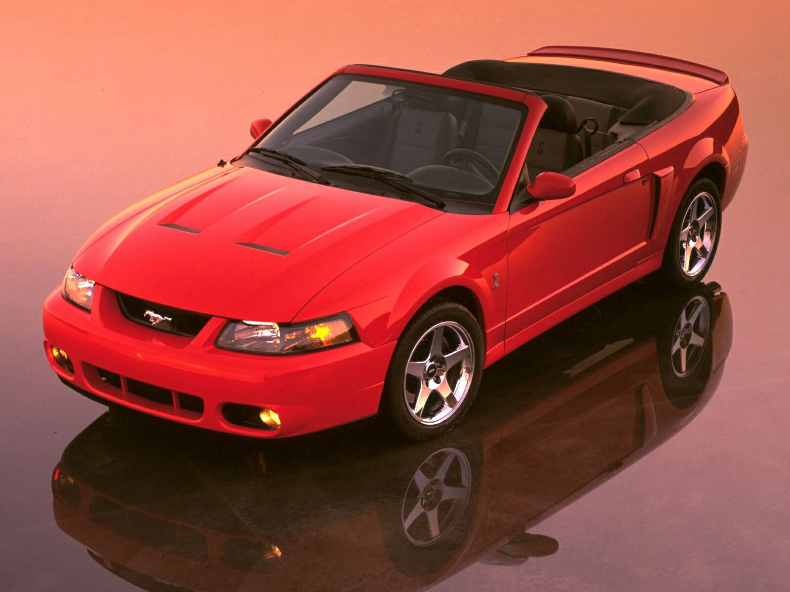 Ford Mustang Cobra photo 10616