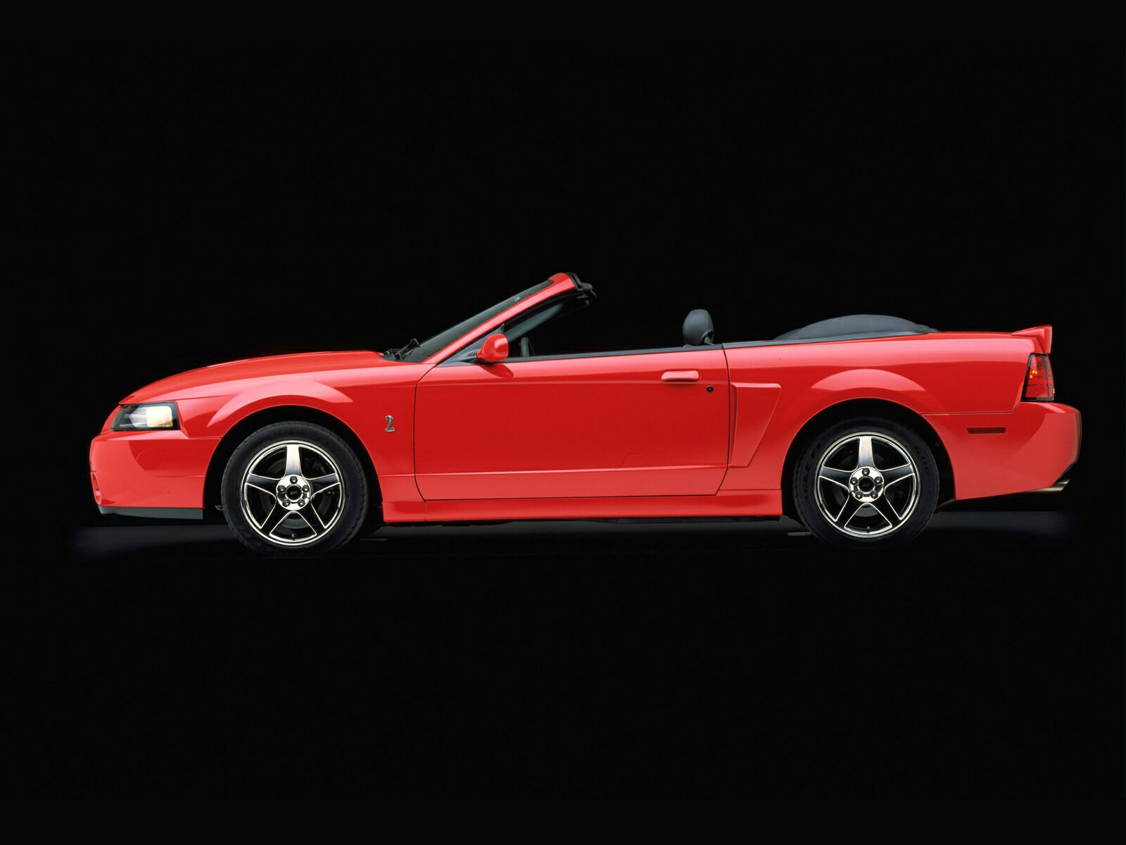 Ford Mustang Cobra photo 10618