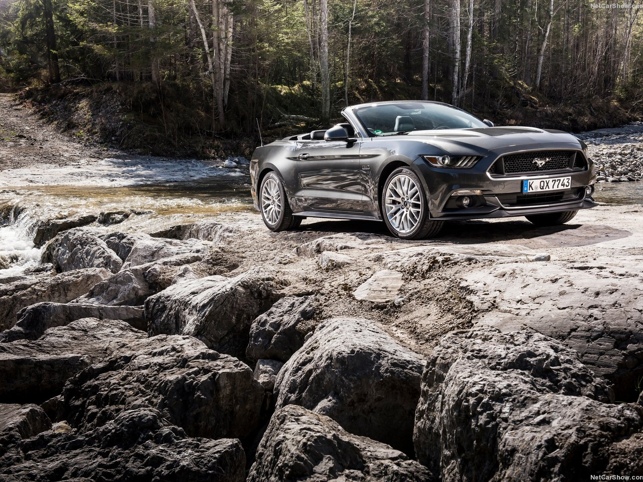 Ford Mustang Convertible EU-Version photo 142112