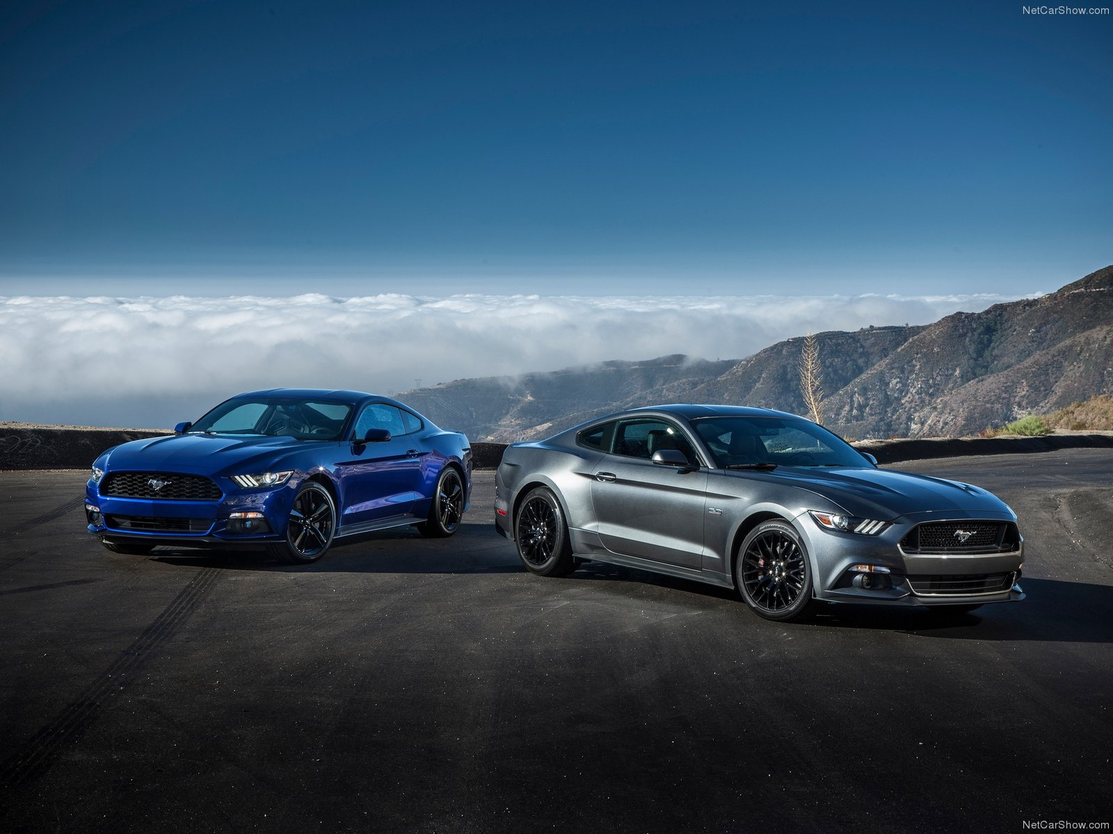Ford Mustang EcoBoost photo 129766