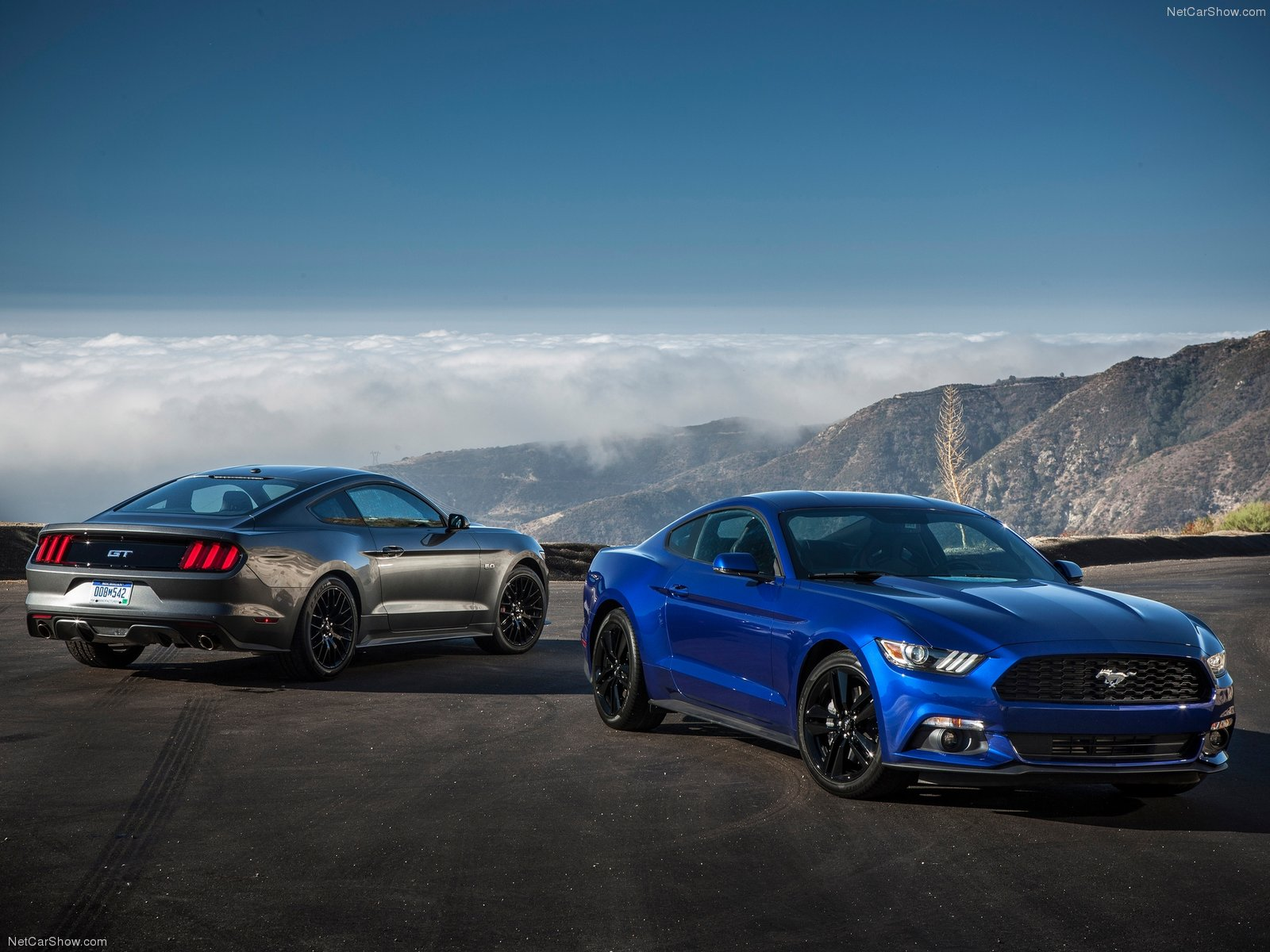 Ford Mustang EcoBoost photo 129767