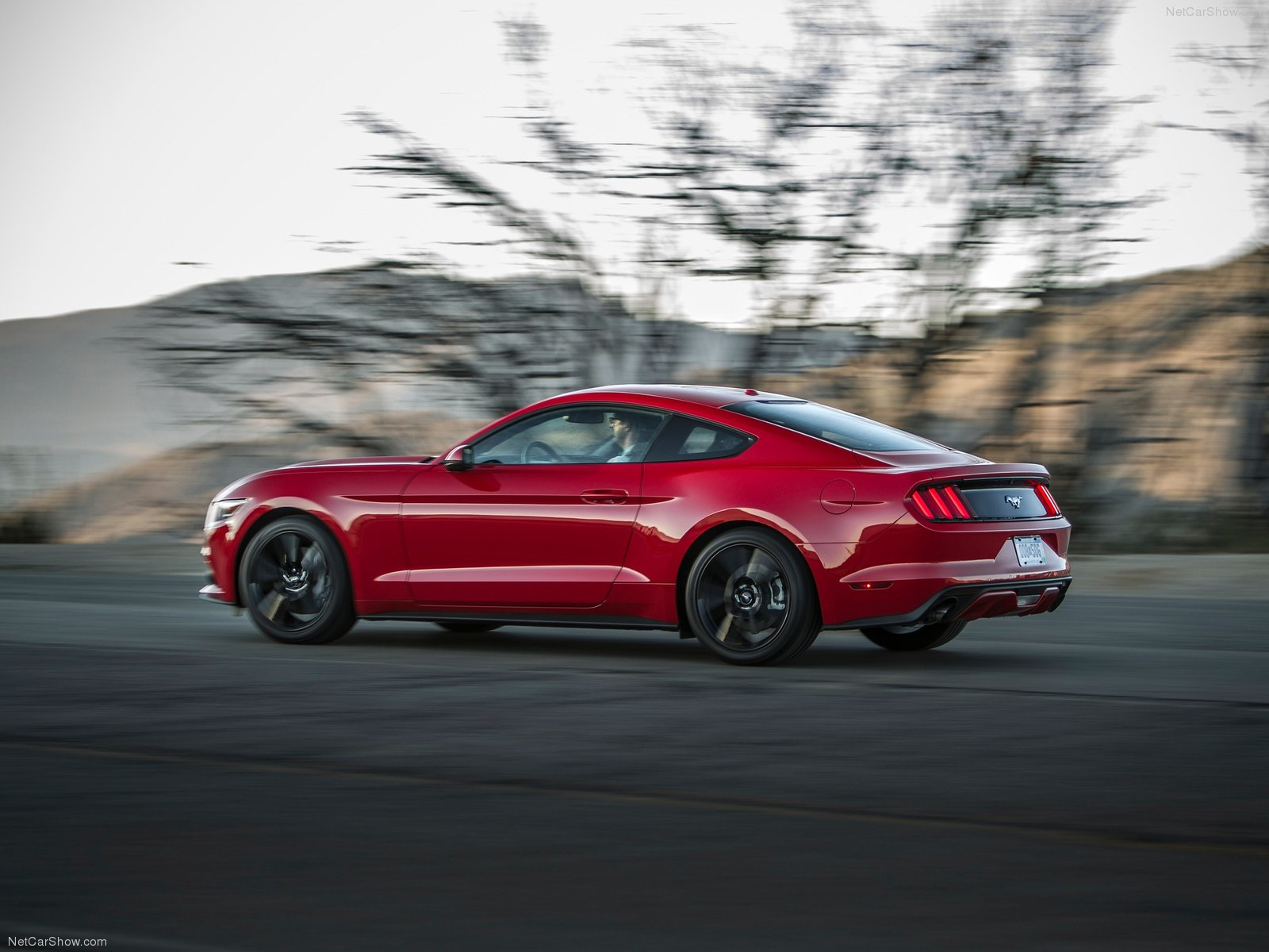 Ford Mustang EcoBoost photo 129775