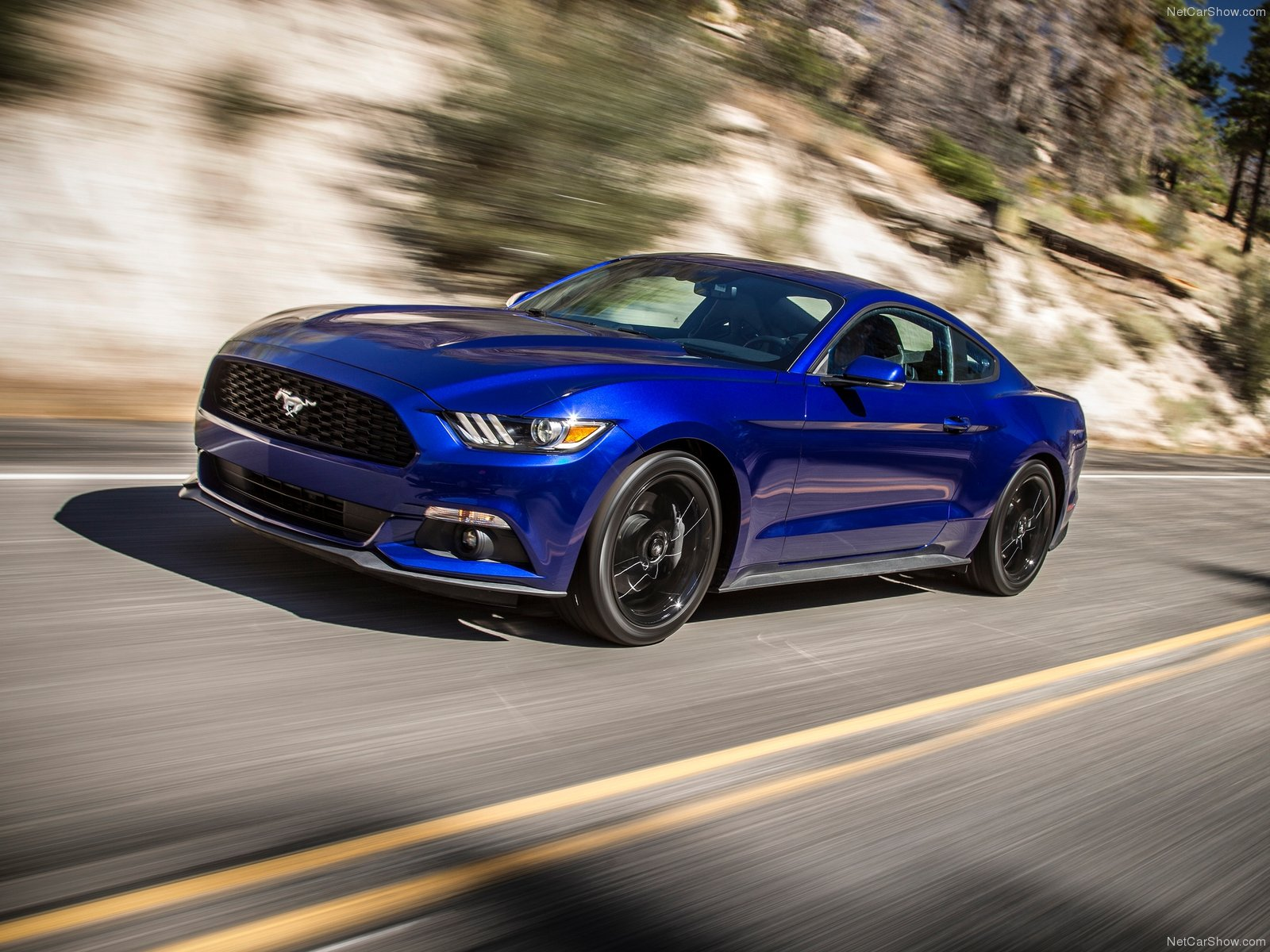 Ford Mustang EcoBoost photo 129790